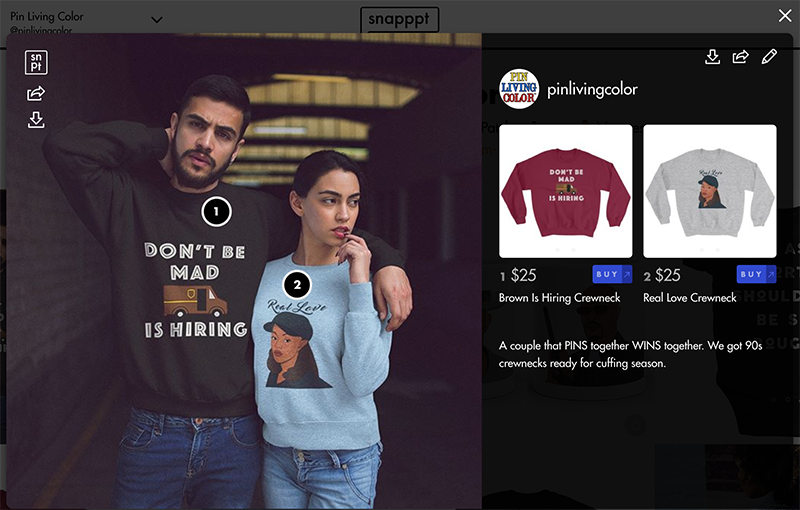 Make Your Posts on Instagram Shoppable with Snapppt